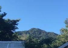 2019年9月15日  今日のアリスの森の目覚めです。No,1096