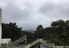 2019年10月12日 今日のアリスの森の目覚めです。No,1123