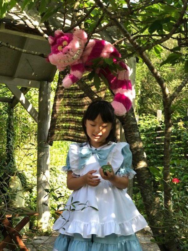 昨日は不思議の国にアリスが帰ってきてくれました。🌹バラは次々開花中です。