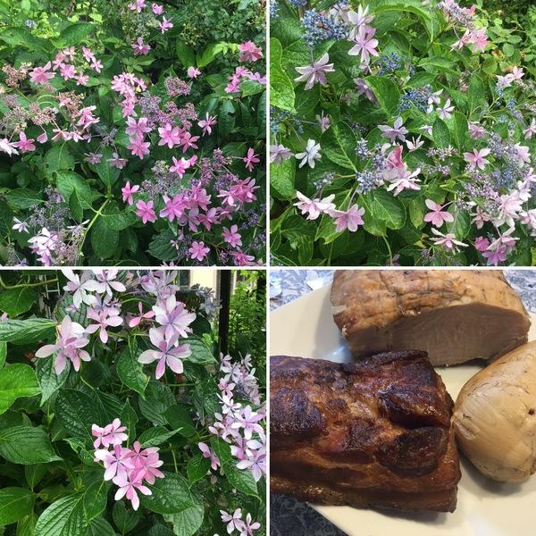 手作りハム&ベーコン🥓完成❣️同じ花でも個性が出る不思議の国の花園へ迷い込んでくださいね。😊