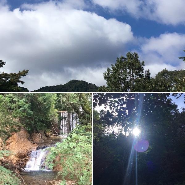 マイナスイオンとフィトンチッド溢れるアリスの滝で、思いっきり深呼吸してくださいね。❣️