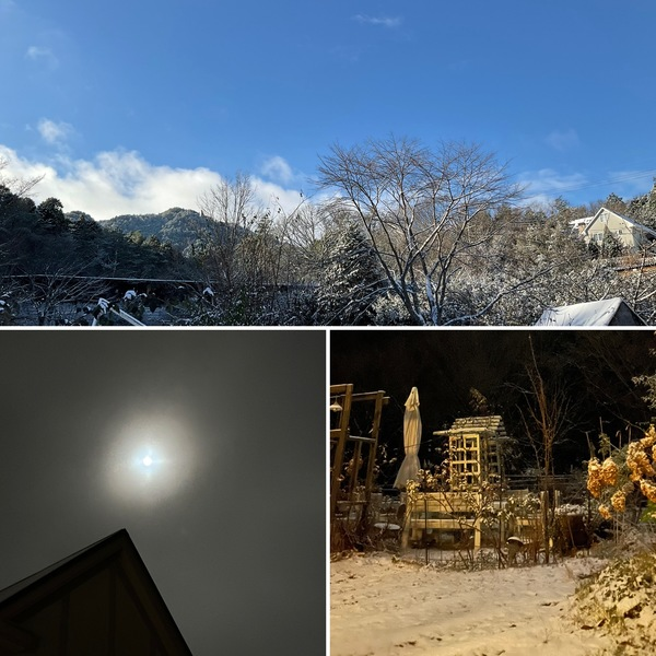 雪景色で迎えた大晦日。昨夜は満月と雪あかりでとっても明るい夜でした。今年一年ありがとうございました。