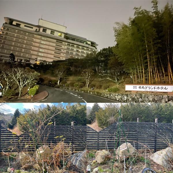 只今つるバラの剪定中✂️🌹 緊急事態宣言で有馬温泉の大半の旅館が閉館中