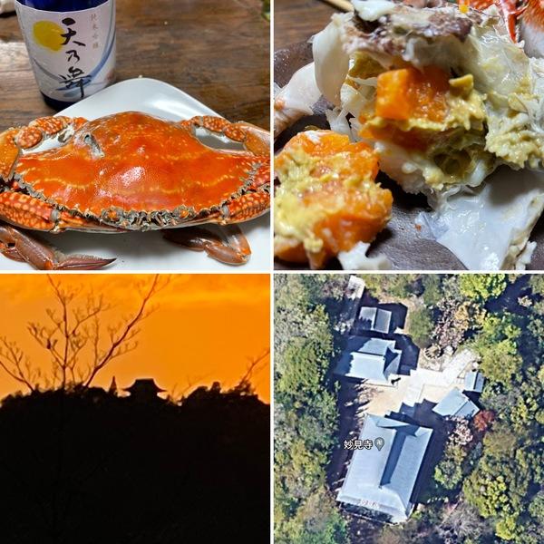 ゆの里帰りにゲットした泉州の渡り蟹🦀めっちゃ美味しい❣️ 夕焼けに浮かぶお寺の影の謎を解明できました。