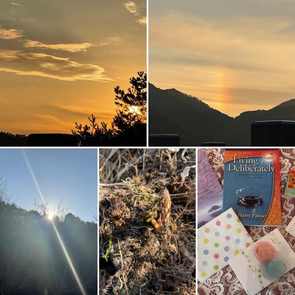 有馬に沈む夕陽☀️と谷間の虹🌈 ツクシの子も現れ、もうすぐ春ですね。🥰