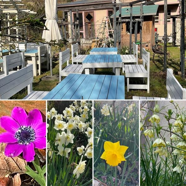 ガーデンテーブルのペンキを塗り直しましたよ❣️不思議の国の花園でバーベキューなどで楽しんでくださいね。