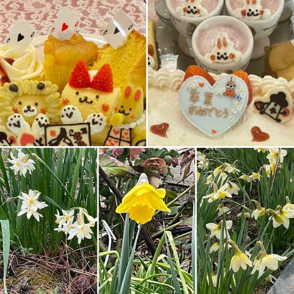 昨日は雨の日曜日☂️卒業祝いとアフタヌーンティーでかわいいケーキで大歓声🥰ガーデンは水仙が盛りです。