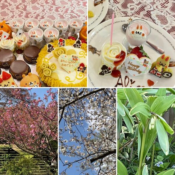 八重桜や名残り桜が咲く不思議の国の花園で、歓声あがるお誕生日ケーキでお祝いくださいね。