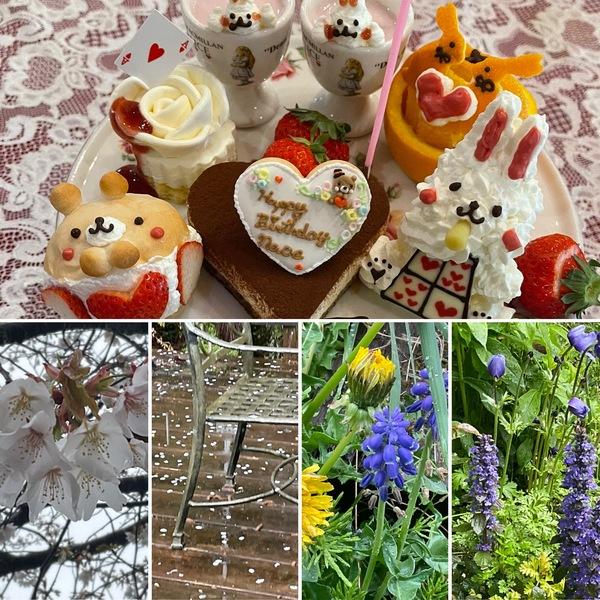 まだまだ桜🌸咲くアリスの森🌲かわいいケーキでお誕生日会🐻🍰色んな花咲く不思議の国の花園に迷い込んでくださいね。