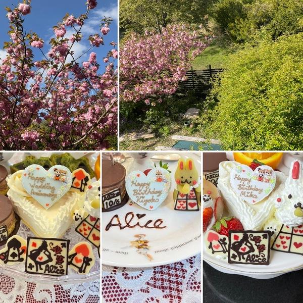 かわいいケーキが大活躍の不思議の国のお誕生日会&結婚記念日のお祝い❣️今日から三日間は臨時休業させていただきます。