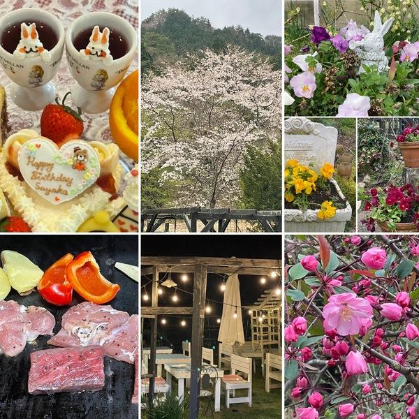 昨夜は、桜咲く🌸アリスでお誕生日会🎂、BBQ🥩をお楽しみいただきましたよ。❣️