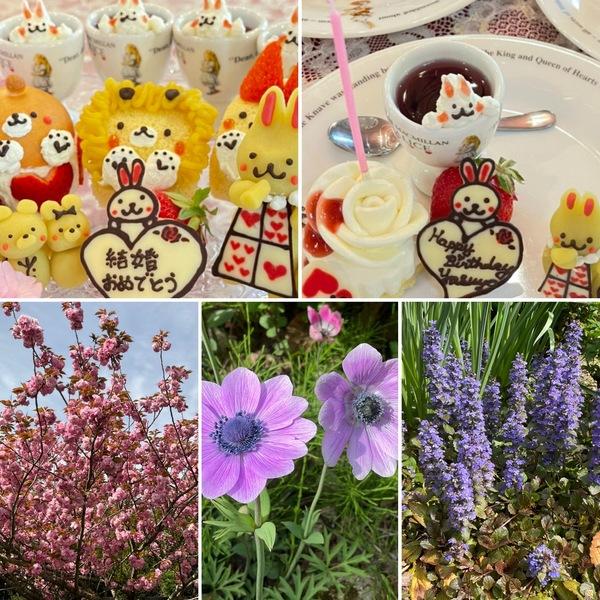 昨日はご結婚💒のお祝いとお誕生日会❣️今日も色んな花咲く不思議の国の花園に迷い込んでくださいね。🤗