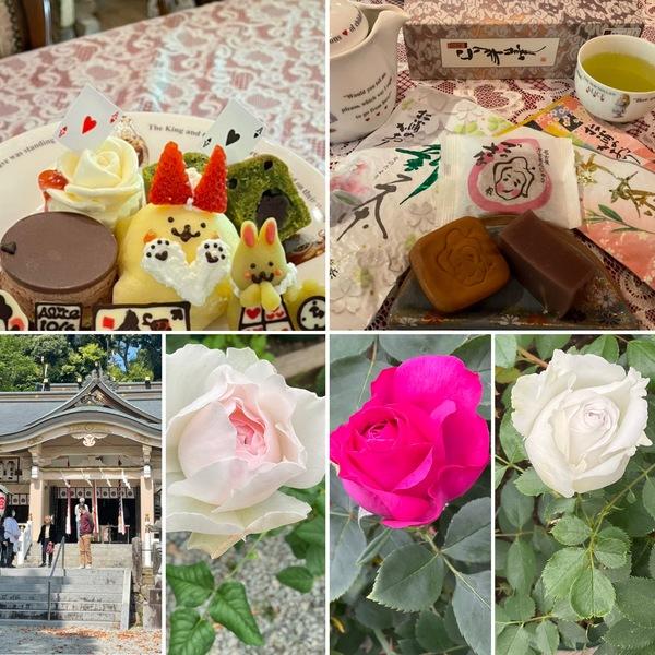 今日は5月1日 公智神社⛩の月次祭で祈り🙏和菓子と玉露🍵でまったり🥰バラが咲き始めた不思議の国の花園に迷い込んでくださいね。