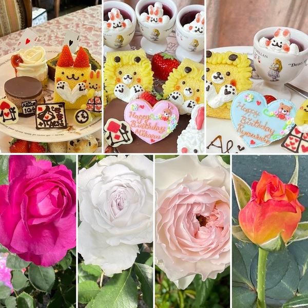 バラが咲き始めた不思議の国でアフタヌーンティー&お誕生日会&ガーデンバーベキューetcお楽しみくださいね。