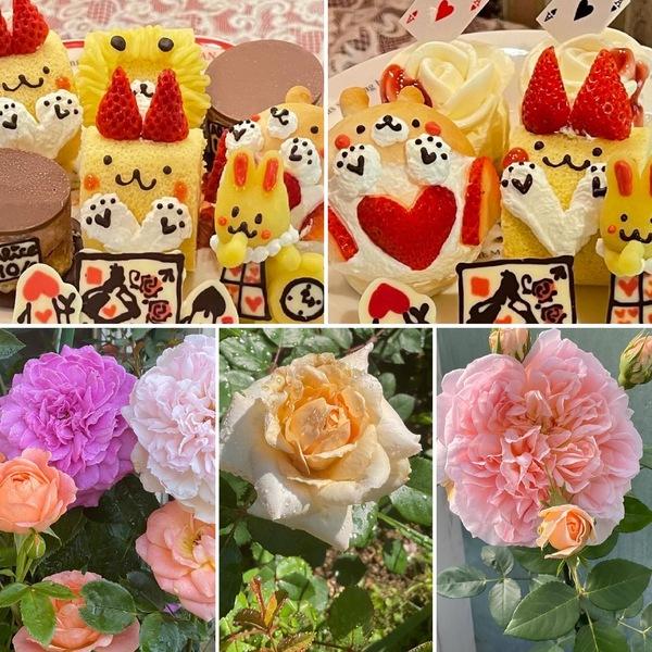 笑顔溢れる不思議のアフタヌーンティー🍰薔薇🌹香る不思議の国の花園でお楽しみくださいね。🥰