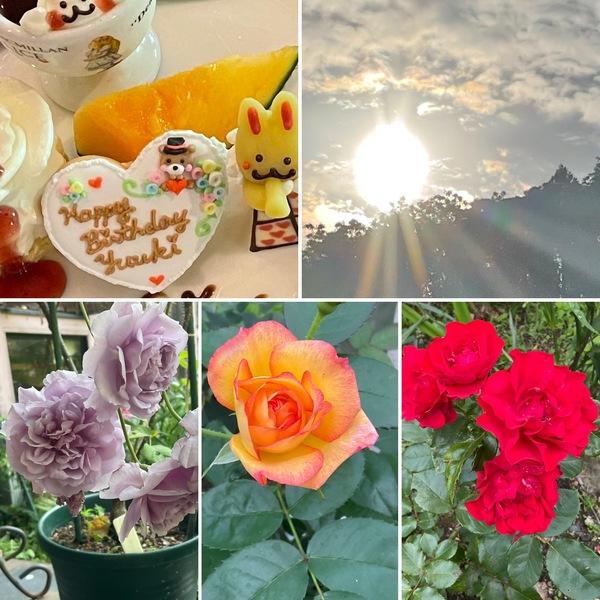 朝日輝くアリスの森🌲薔薇香る不思議の国のひと時をお楽しみくださいね。