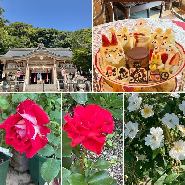 今日は6月1日公智神社に月次祭へ⛩今日のアリスは定休日❗️です。