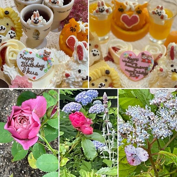 不思議の国のお誕生日会&ホタルの夕べをバラとアジサイが奏で不思議の国の花園でお楽しみくださいね。🥰