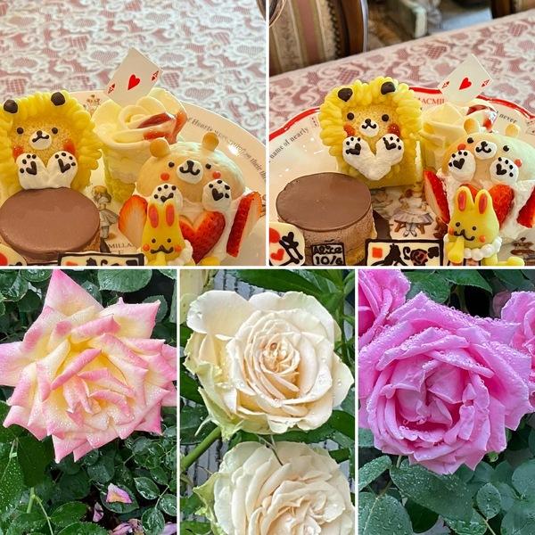 昨日は、シンクロしたアフタヌーンティー🍰🍰雨にも負けず薔薇🌹咲く不思議の国の花園に迷い込んでくださいね。