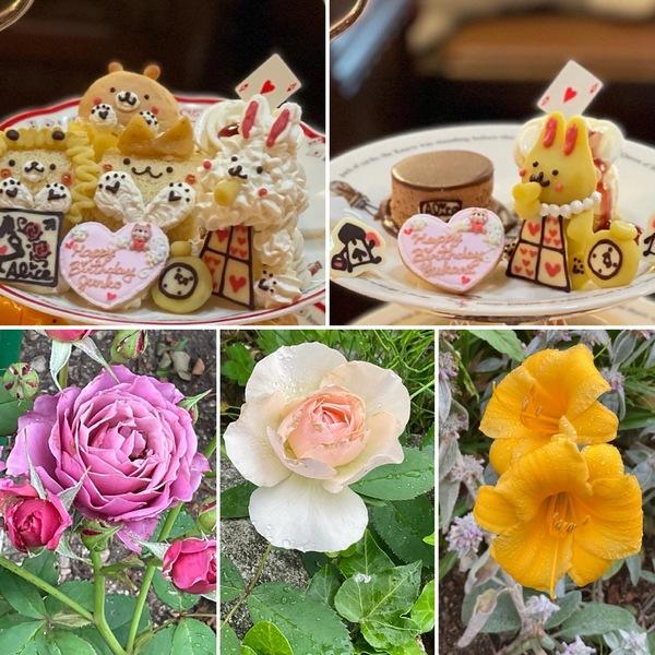 アフタヌーンティーでお誕生日のお祝い❣️もできる不思議の国の花園に迷い込んでくださいね。