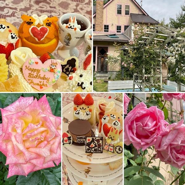 不思議のかわいいケーキたち🍰デザート&アフタヌーンティー&お誕生日会🎊不思議の国の花園に迷い込んでお楽しみくださいね。🥰