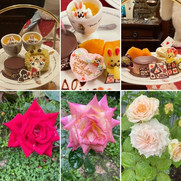 かわいいケーキでお誕生日会やアフタヌーンティーをお楽しみ下さいね。今日も夏バラ咲く不思議の国の花園に迷い込んでくださいね。