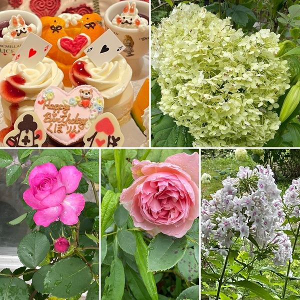 シニアも楽しむ不思議の国のお誕生日女子会🎉今日も色んな花咲く不思議の国の花園に迷い込んでくださいね。🥰