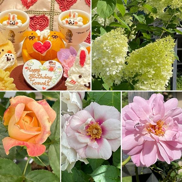 ティータイムのお誕生日会🎂梅雨明けの不思議の国の花園に迷い込んでくださいね。🥰