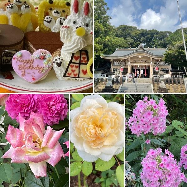 今日は8月1日公智神社⛩の月次祭に行ってきました。昨日はアフタヌーンティーお誕生日会🎊今日も不思議の国の花園に迷い込んでくださいね。🥰