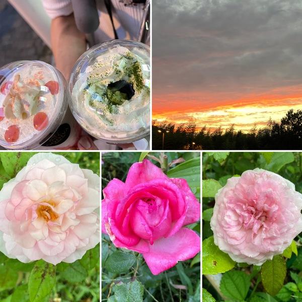 昨夕は、ぷらっと三田のアウトレットへ!ゴディバのあまおうと宇治抹茶で夕陽を眺めてまったり🥰不思議の国の秋、お楽しみくださいね。🤗