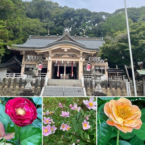 今日は9月1日 恒例の公智神社の月次祭へ⛩ 萩も咲き出した不思議の国の秋が始まっています。