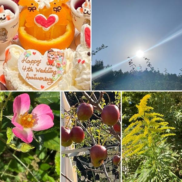 秋です。不思議の国で結婚記念日のお祝いいかが?姫リンゴ🍎が熟すアリスの森のひと時をお楽しみくださいね。🤗